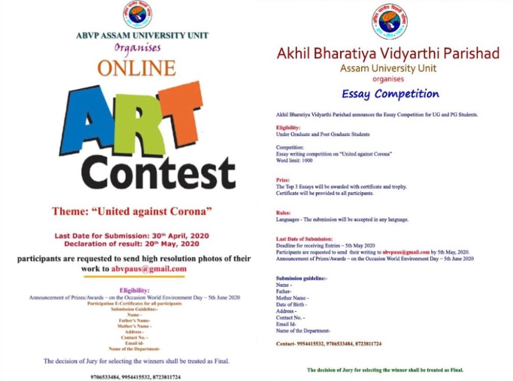 Online art essays